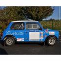 Lunette arrière Makrolon Austin Mini