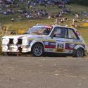 Vitre arrière latérale Makrolon Peugeot 104