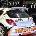 Lunette arrière Makrolon Peugeot 207