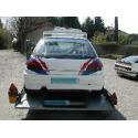 Hayon - Peugeot 306