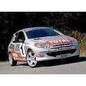 Ailes Avant - Peugeot 206 RC