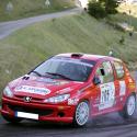 Vitre arrière latérale Makrolon Peugeot 206