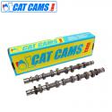 Arbre à came Cat Cams Peugeot 206 S16