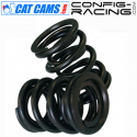 Kit de Ressorts de soupapes Cat cams Peugeot 206 S16 - EW10J4